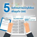 การทำบัญชี ธุรกิจ SME, สินเชื่อ SME