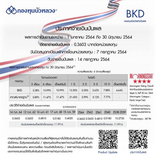 กองทุนหุ้นไทย , กองทุน BKD ,กองทุน BSIRIGC,
